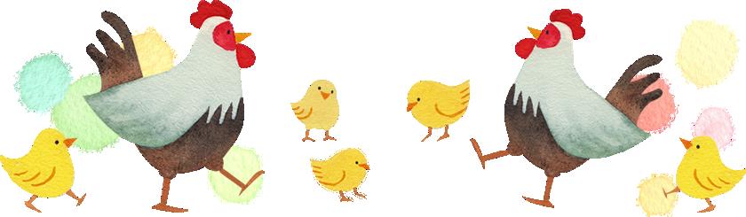 ニワトリとヒヨコのイラスト